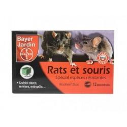 Rats et Souris Spécial lieux humides.