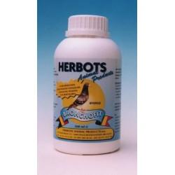 Bronchofit (500 ml)